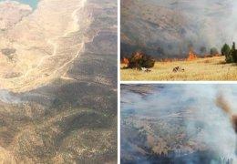 Waldbrände in Mêrdîn und Şirnex