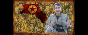 Bagok'ta 6, Metina'da 1 gerilla şehit düştü