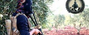 Efrîn ne warê dagirkeran e