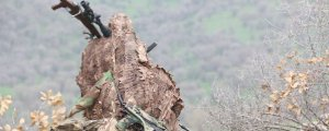 Çaresiz Türk ordusu köpeklerden medet umuyor