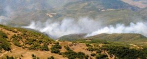 Hozat'ta orman yakıldı