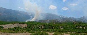 Dicle'deki yangına müdahale edilmiyor