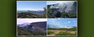 Dicle'deki yangınElazığ sınırına ulaştı