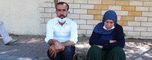 Şenyaşar:Tek tutuklu yok