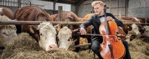 Konserên ji çêlekan re