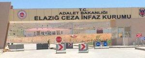 Kürtçe şarkı ve halaya soruşturma Meclis'e taşındı
