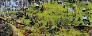 Qawuman: Köy, kent ve toplumsallık