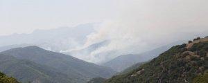 Bir Savaş Politikası: Orman Yangınları