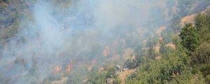 Şırnak'ta dört ayda 21 orman yangını
