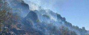 Şemdinli'deki yangın yayılıyor