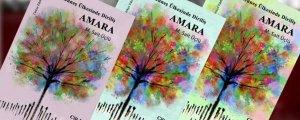 'Güneş Ülkesinde Diriliş: Amara' romanı çıktı