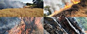 Lice mahallelerinde yangın