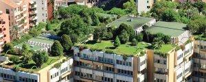 Frankfurt'ta yeşil çatılar