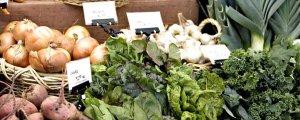 Küresel gıda fiyatları zirveyi gördü