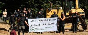 Polizeigewalt gegen Sitzblockade im Dannenröder Wald