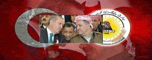 Çend Kurdistan hene?