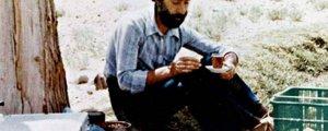 Sohrab Sepehri'nin şiirleri Kürtçede