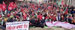 Hindistan'da köylüler, neoliberal dönüşüme karşı