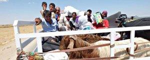 Amed varoşlarında mültecilerin yaşam mücadelesi