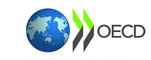 OECD Türk iktidarını uyardı