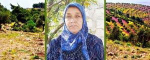 Yaşamı ören kadınların diyarı: Cindîres