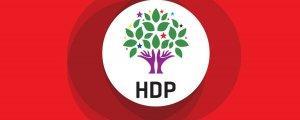Almanya'da vekillerden HDP'ye destek